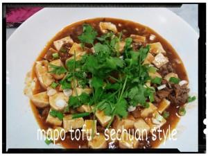 mapo tofu - sechuan style